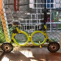 Электровелосипед  TransFOhd green
